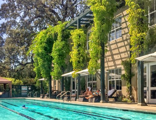 Enjoy the Pool at Health Spa Napa Valley